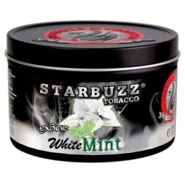 sb_bold_white_mint